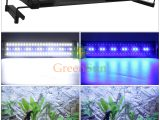 Uk Stecker 6 Watt 11 Watt Aquarium Led Beleuchtung Aquarium Licht regarding dimensions 1200 X 1200